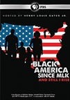 Black America Since MLK: And Still I Rise book jacket