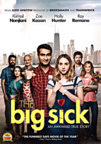 The Big Sick (COMEDY)