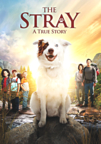 The Stray dvd cover image