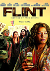 Flint dvd cover image